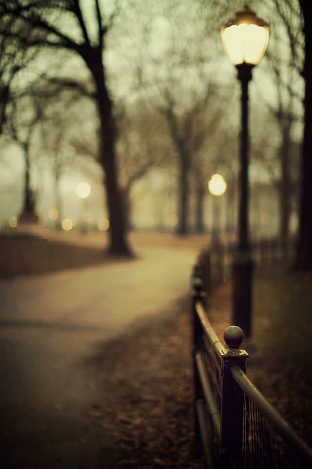 #17. Parks/Greenways