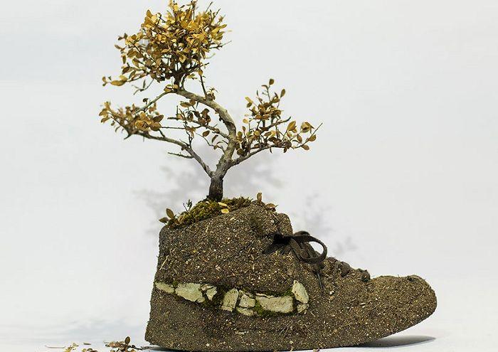 Растительные композиции в виде спортивной обуви.