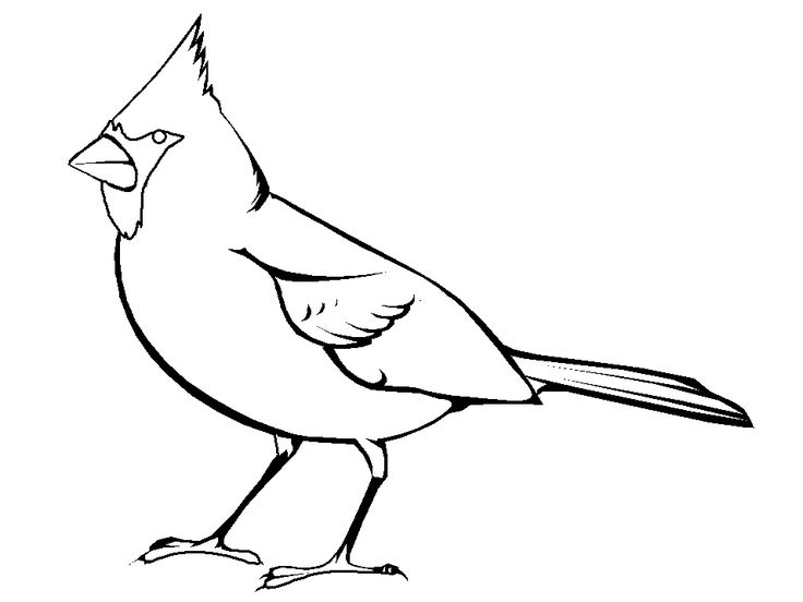 Cardinal Bird Coloring Page embroidery