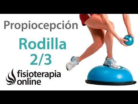 Ejercicios Propioceptivos para fortalecer la rodilla. Propiocepción de rodilla nivel inicial | Fisioterapia Online