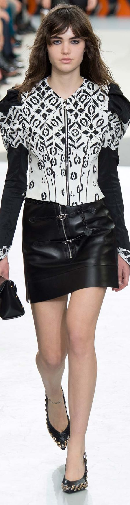 Fall 2015 Ready-to-Wear Louis Vuitton