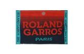 French Open at Roland-Garros/Paris. Men's Final.