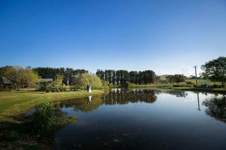 Immerse's ornamental lake