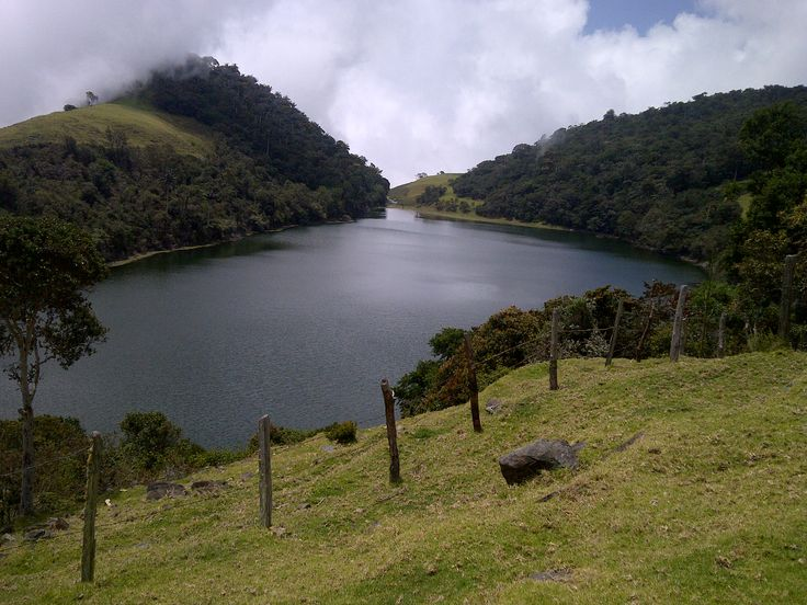 LAGUNADE  LOS  LIRIOS, PARAMO DE MARIÑO. TOVAR EDO. MERIDAVENEZUELA