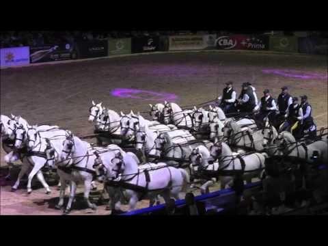 OTP Lovas Világkupa 2012 - Hatosfogat karüsszel - YouTube
