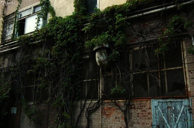 Jeden z budynków stoczni Gdańskiej   / #ilovegdn