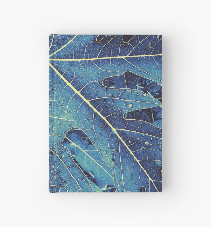 Blue and Yellow 9 fingers leaf  by alfreya