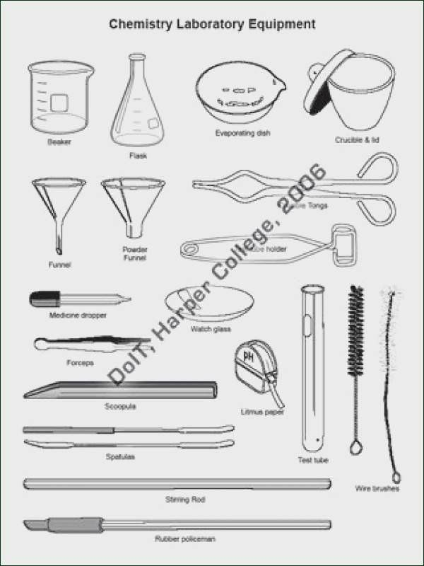 Pin On Halloween Science lab equipment worksheets