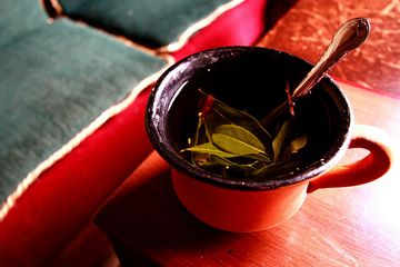 Coca tea is an made by boiling coca leaves and sugar. This tea, also known as mate de coca, is popular in the Andean region.