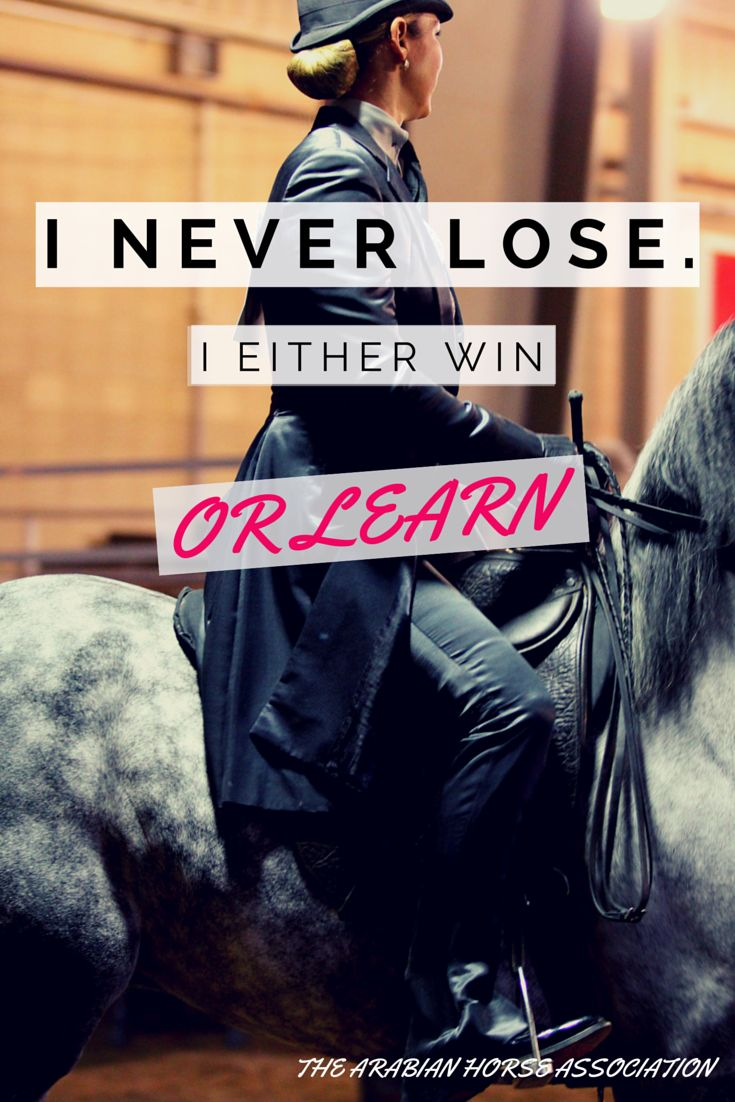 Don't forget to keep on learning! #MotivationalMonday #Arabianhorses