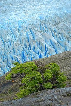 Grey Glaciar, Torres del Paine National Park, Patagonia, Chile