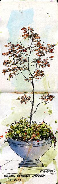 missouri botanical garden | Flickr - Photo Sharing!