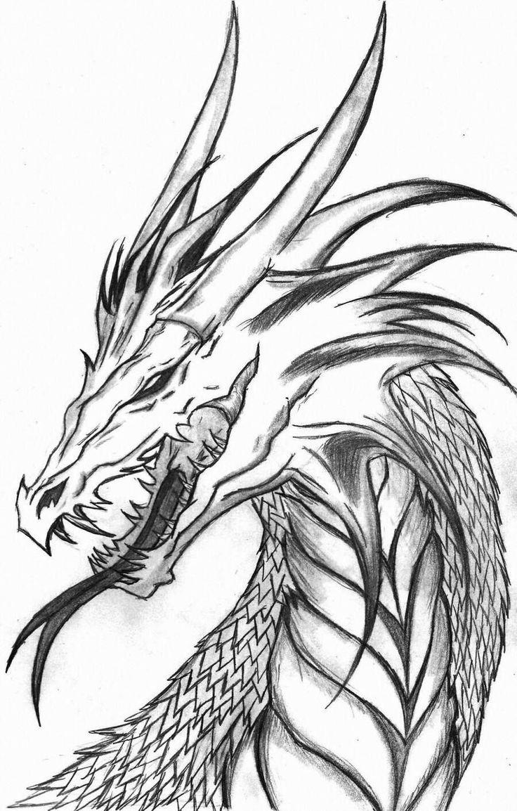 Böse Drachen Malvorlagen   Bleistiftzeichnungen, Zeichnung ...
