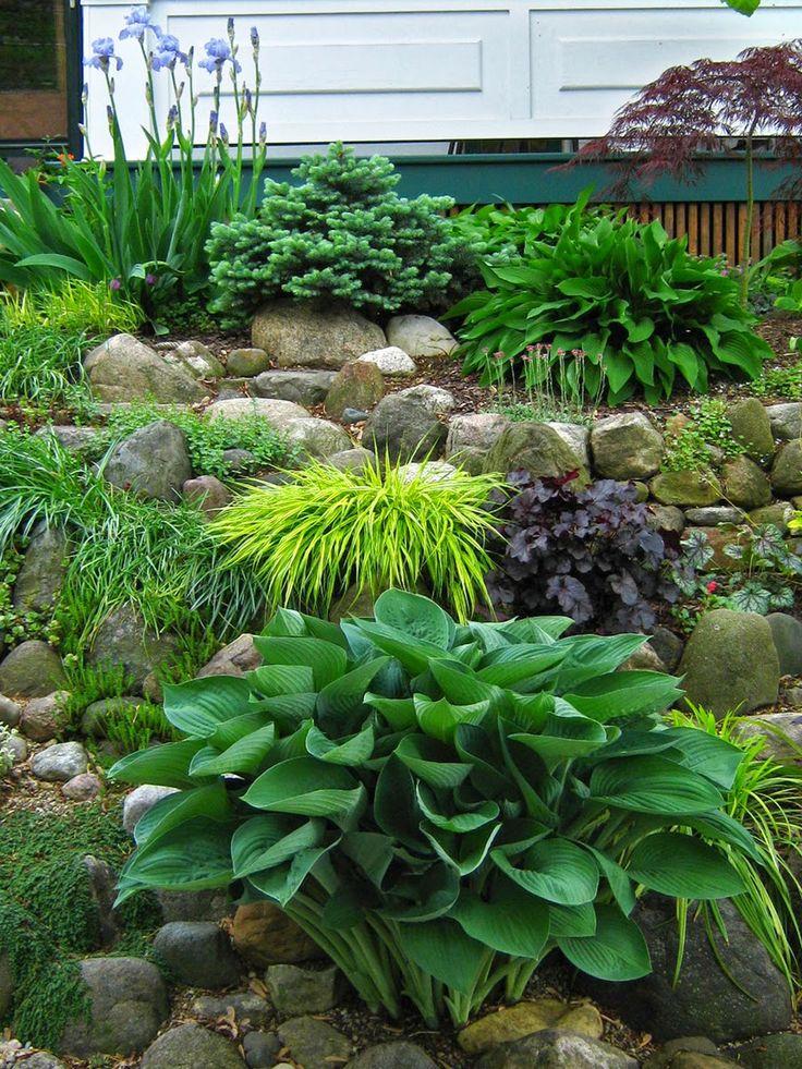 644 best rock garden ideas images on pinterest decks. Black Bedroom Furniture Sets. Home Design Ideas