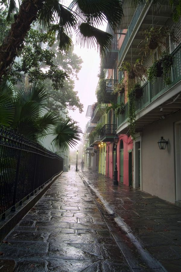 Pirates' Alley in New Orleans was the home of American Nobel/Pulitzer laureate novelist, William Faulkner. The St. Louis Cathedral is on the left and the alley opens up to Jackson Square.