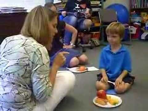 video - autism speech therapy picnic