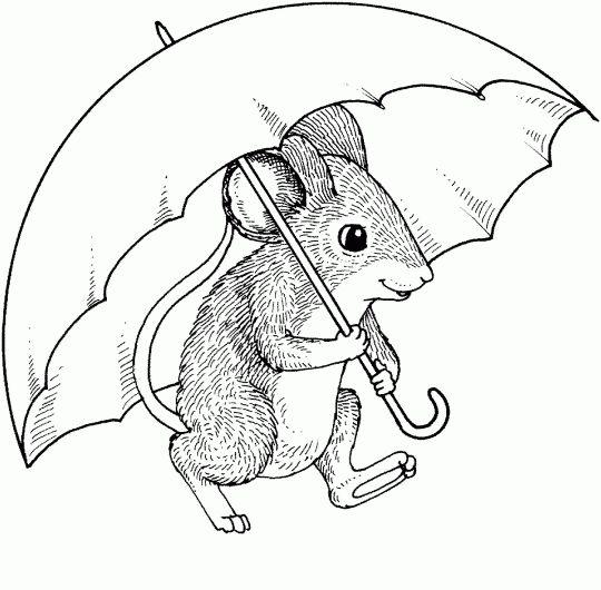 best rats love coloring images on pinterest  digi