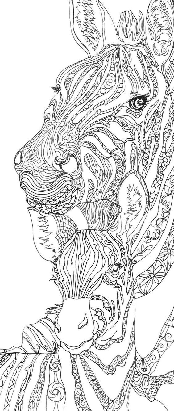 Zebra Clip Art Coloring Pages Printable Adult Book Hand Drawn Original