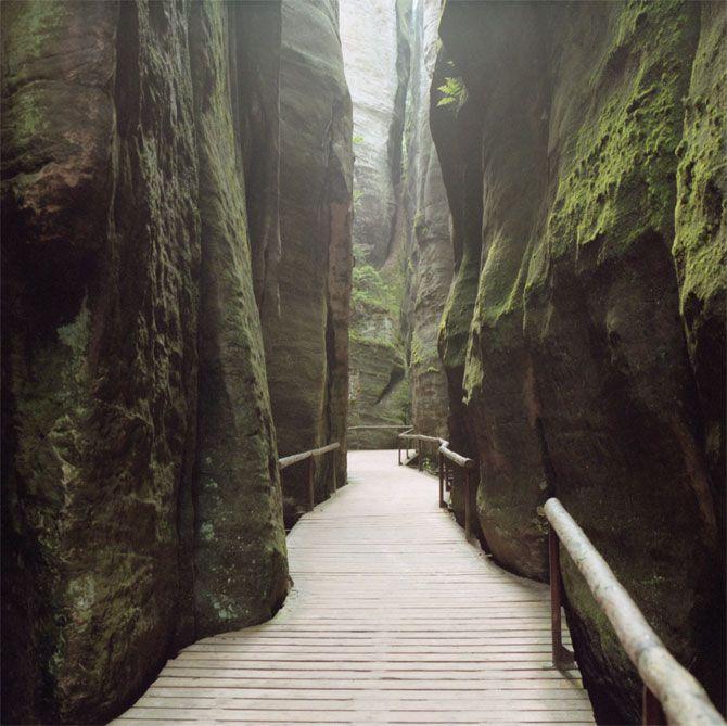 amazing path: States Parks, Grand Entrance, Beautiful Places, Amazing Paths, Bridges, Landscape, Natural, Roads, Wisconsin Dell