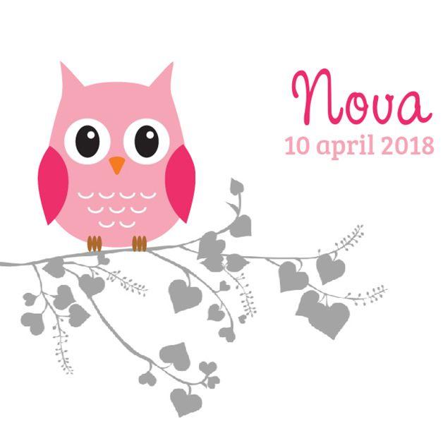 Geboortekaartje: Roze uil op een hartjes takje - voorkant