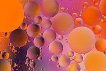 Rapeseed Oil Bubbles in Water by Tony Howell (present day).  Abstract with coloured backdrop using macro lens