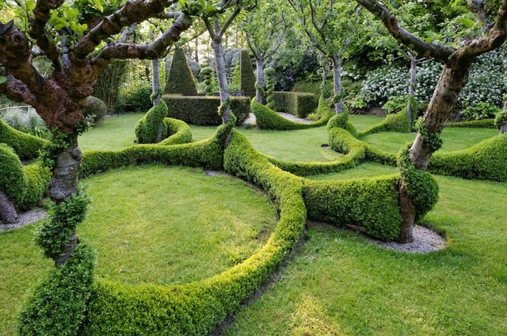 very cool hedges, but probably not doable for the average gardener