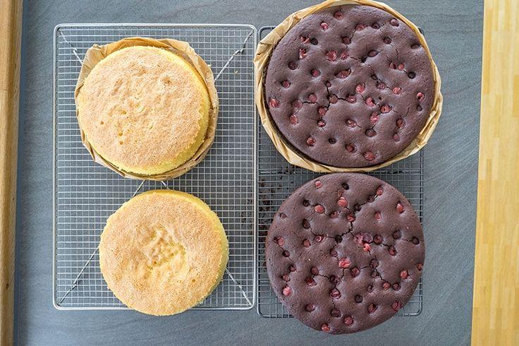 72 besten Torte a piani di sallys blog Bilder auf Pinterest  Backen Se rezepte und Videos