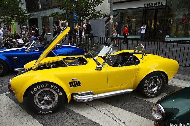 Yellow Cobra | Flickr - Photo Sharing!