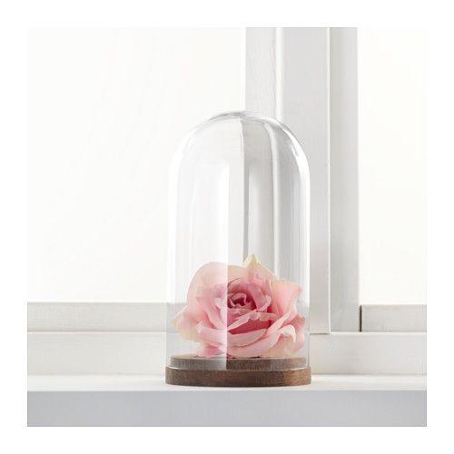 HÄRLIGA Cloche en verre avec socle, verre transparent