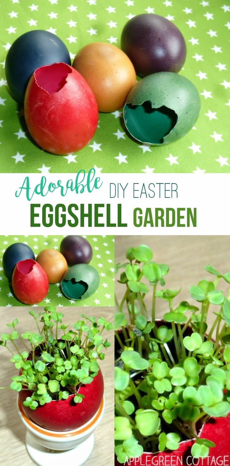 Easter eggshell garden decoration and spring gardening - This eggshell mini garden makes a lovely diy Easter centerpiece, and it's a fun spring project!