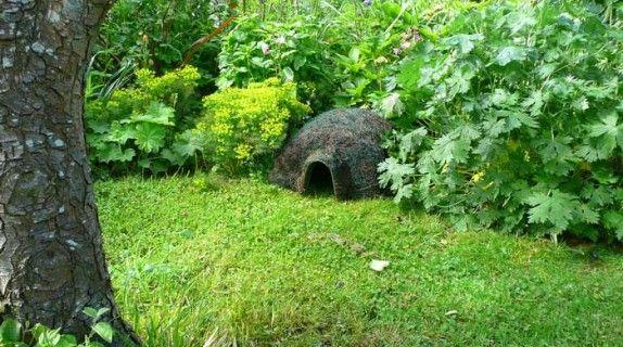 Date casa ai ricci! Come costruire casa a questi simpatici animali! #animals #hedgehog #gardens