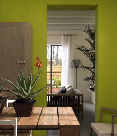Una parete verde  Interior Designer  Pinterest  Photos and Arredamento