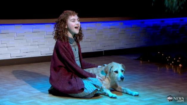 Good Morning America Tomorrow : Best annie the musical images on pinterest