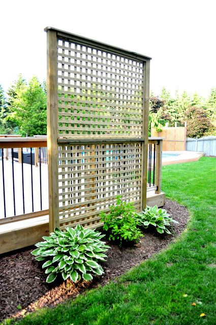 Best 25 deck privacy screens ideas on pinterest privacy for Living screen fence