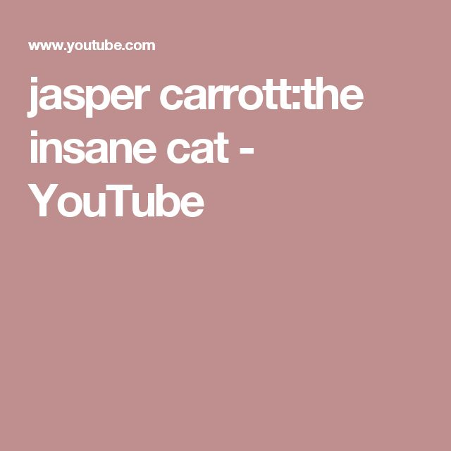 jasper carrott:the insane cat - YouTube