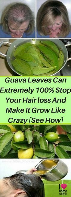 What you need to do if you're faced with this issue is forget about the commercial hair care products and turn to nature. It has the cure for nearly all diseases and medical conditions and can help you with hair loss as well. The best natural remedies for hair loss are guava leaves. They effectively stop hair loss and stimulate new hair growth.