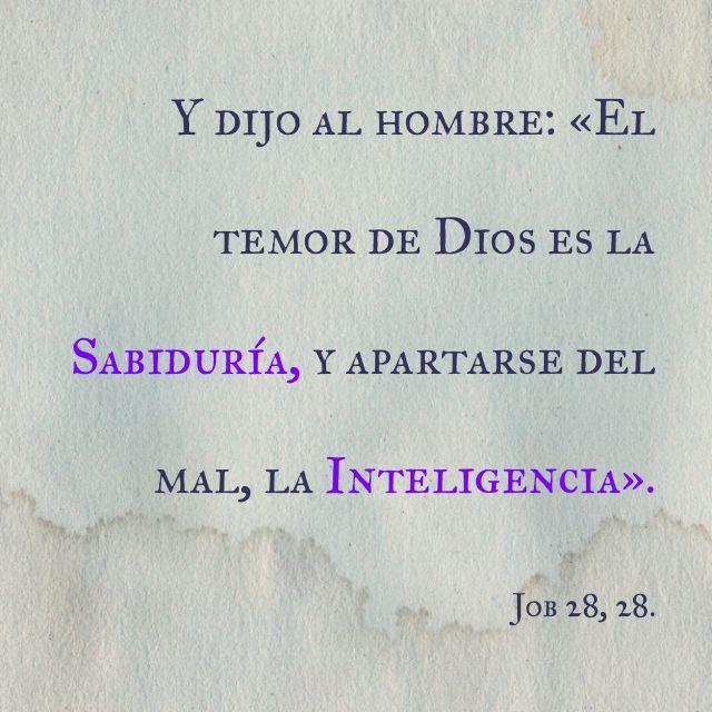 Y dijo al hombre: «El temor de Dios es la Sabiduría, y apartarse del mal, la Inteligencia». Job 28, 28.