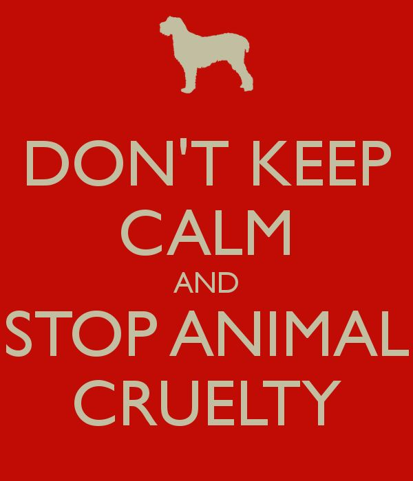 animal abuse posters ideas - photo #9