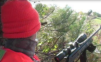 Deer Hunting Tips For Beginners