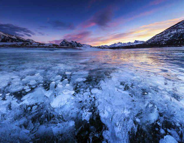 Les bulles gelées du lac Abraham en Alberta, au Canada.