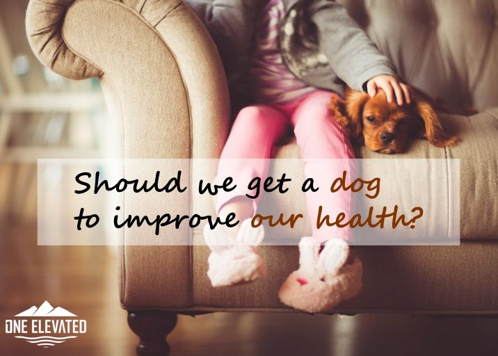 "New research has come out that suggests children reared in homes with dogs are less likely to develop respiratory disorders. As dogs interact with humans, their microbiota (healthy bacteria) appears encourage the growth of positive microorganisms in the humans digestive system. Though the evidence is not yet conclusive, it certainly spurs the familiar family discussion: ""Should we get a dog""?"