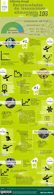 Informe EFSA 2013 | Piktochart Infographic Editor