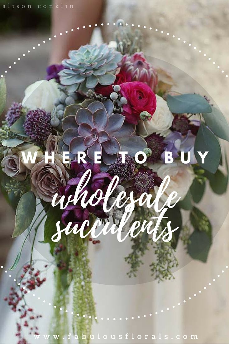 The DIY Bride's #1 resource for DIY wedding flowers Fabulous Florals Buy Bulk wholesale diy flowers here! www.fabulousflorals.com #weddingdecor #diywedding #diyflowers #weddingflowers #succulents