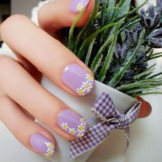 Lavender with daisies.