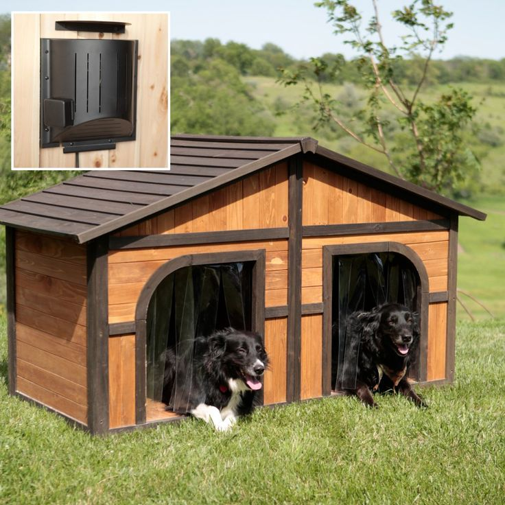 extra double large darker stain duplex dog house features naturally insulating with 2 free dog doors solid wood construction great for multiple or large