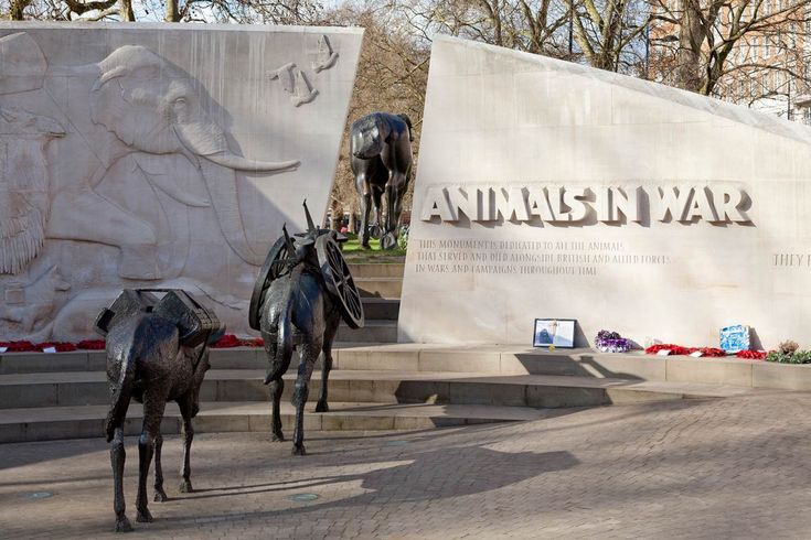 "This memorial, located on Park Lane, is a tribute to all the animals that served, suffered and died alongside the British, Commonwealth and Allied forces in the wars and conflicts of the 20th century.  ""This monument is dedicated to all the animals that served and died alongside British and Allied forces in wars and campaigns throughout time.""  ""They had no choice."""