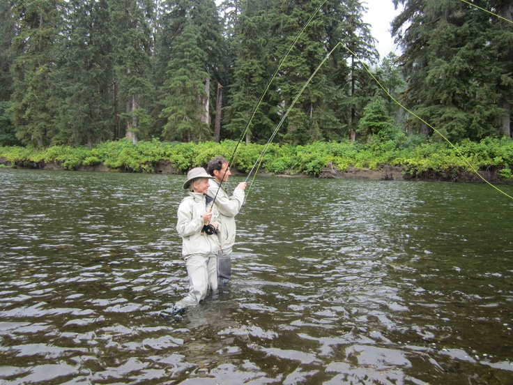 17 Best Images About Pink Salmon On Pinterest Trips The