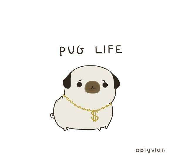"""I didn't choose the pug life. The pug life chose me."" - oblyvian"