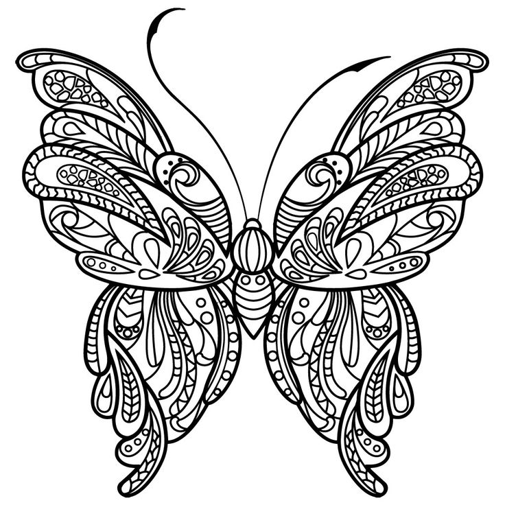 110 Best Butterflies Coloring Pages For Adults Images On
