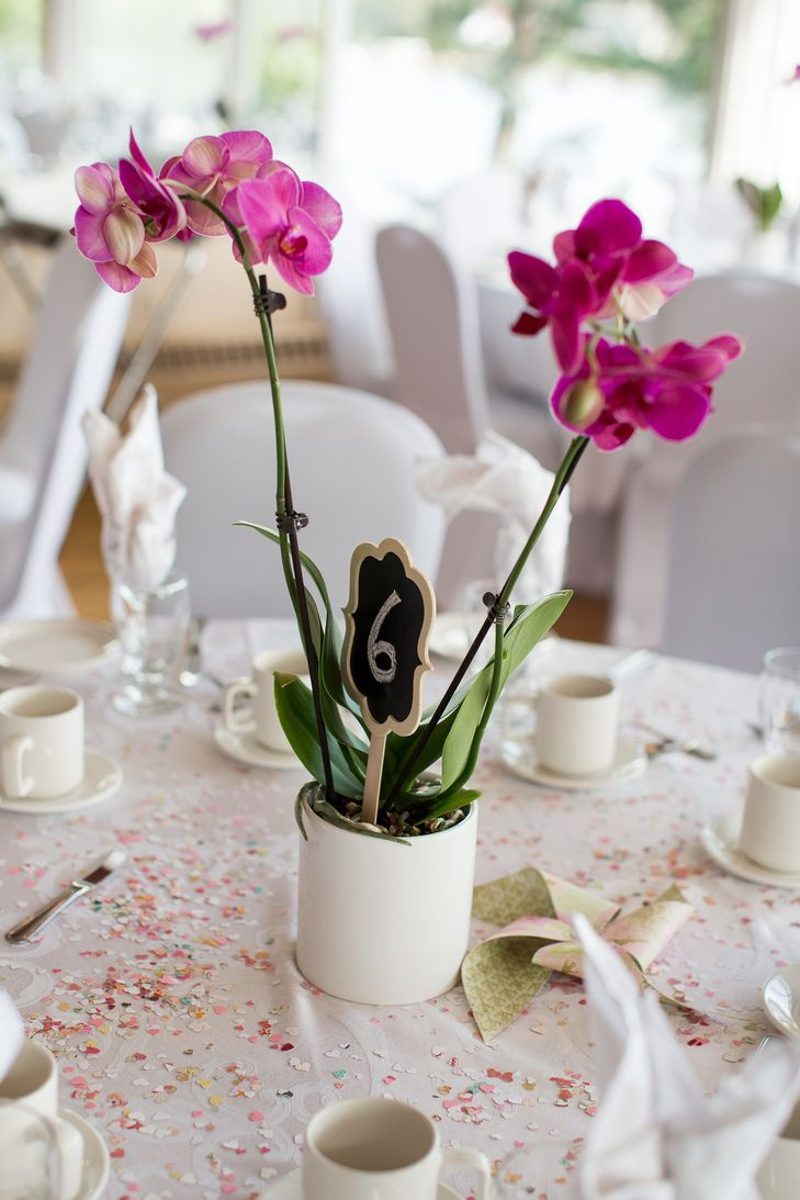 Best ideas about orchid centerpieces on pinterest